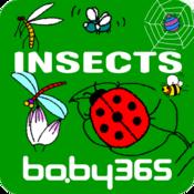 麦粒认知绘本-虫儿歌-baby365